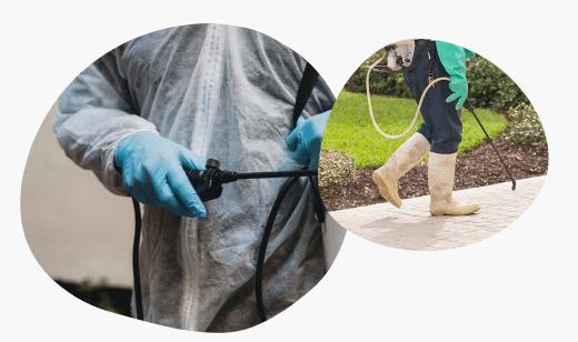 Pest Control Caroline Springs