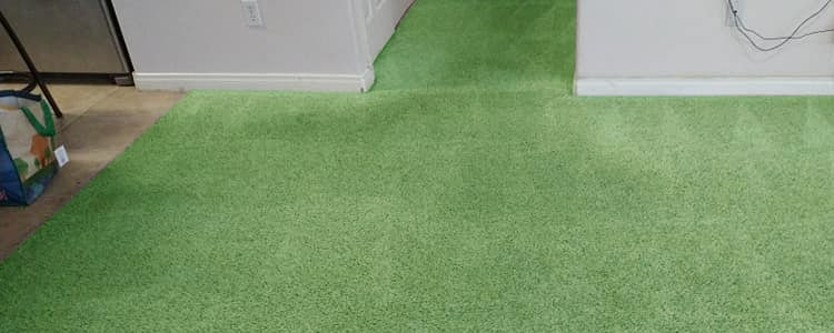 Green Carpet Cleaning Service